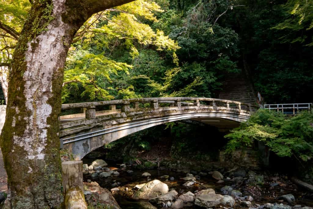 Bridge hidden in the forest at Minoo Park.