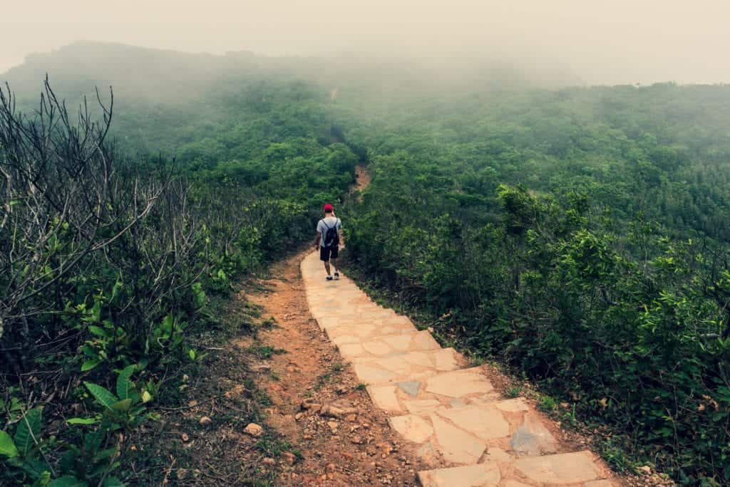 beyond-the-skyscrapers-conquering-the-dragon-in-hong-kong-man-on-a-hiking-trail-at-dragons-back-a_t20_09Wd99