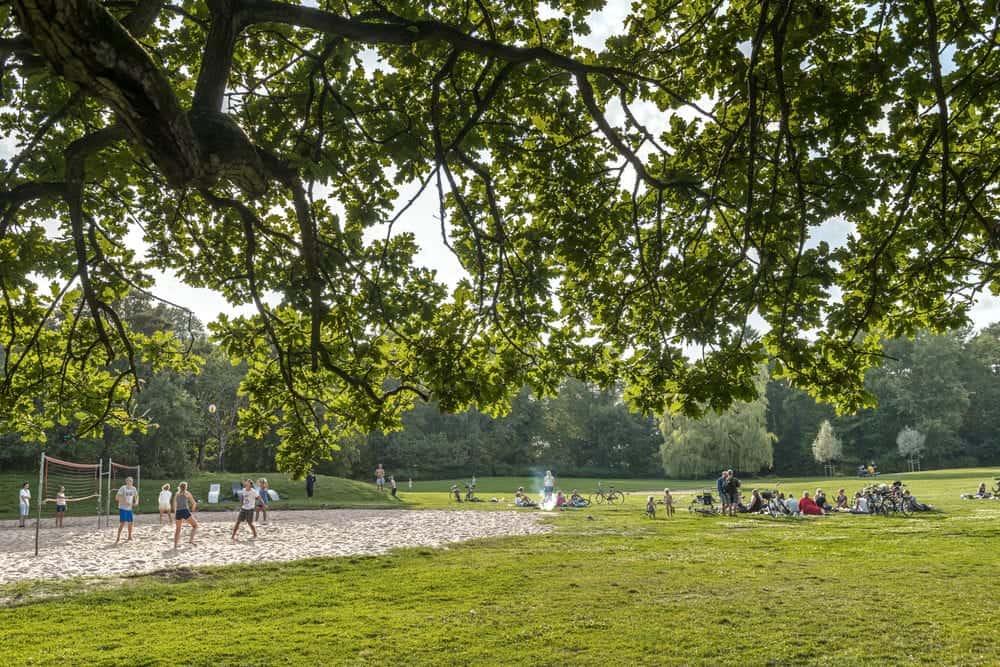 People playing around in Slottsskogen with it's open park.